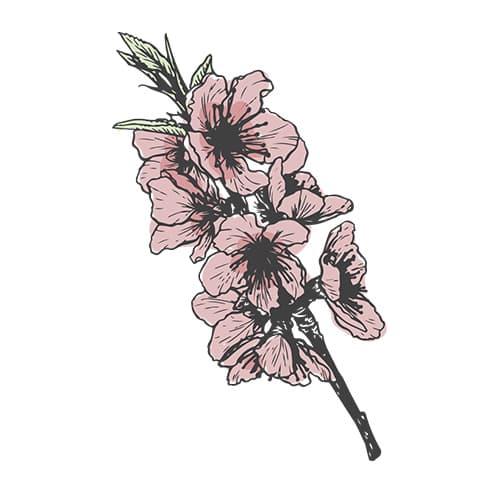 ingrediente naturale fiori di bach